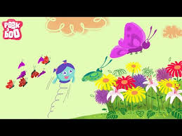 the butterfly song with the dubby dubs songs and rhymes