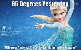 Elsa Memes - scumbag elsa quickmeme