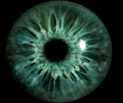 iris illuminati eye of the illuminati the eye si gh t