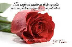 imagenes para enamorar con flores imagenes de rosas para enamorar mucho mas a tu novia por whatsapp