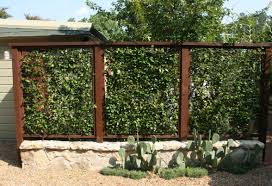 fence awesome garden privacy fence 15 awesome diy lawn fencing