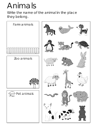 animal worksheets for kindergarten worksheets