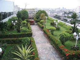 roof garden plants 30 rooftop garden design ideas adding freshness to your urban home