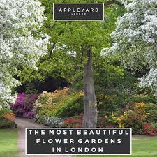 the most beautiful flower gardens in london appleyard blog