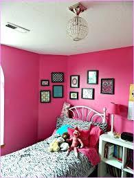 pink and zebra bedroom zebra room accessories 4ingo com