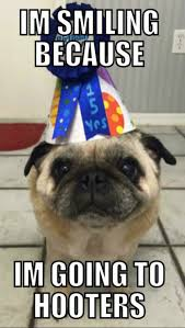 Birthday Pug Meme - pug told he had weeks to live just celebrated his 15th birthday at