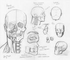 random anatomy sketches 7 by rv1994 on deviantart