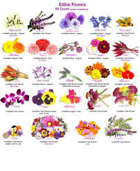 flowers edible 23 recipes that will feed your inner flower child edible flowers