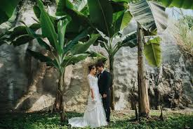 tropical wedding theme how to create a tropical wedding theme our wedding