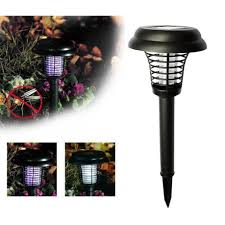 Outdoor Bug Lights by Best 25 Low Maintenance Landscaping Ideas Only On Pinterest Low