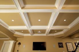 Ceiling Tile Painting Ideas by Furniture Marvelous Images About Ceiling Ideas Tray Ceilings
