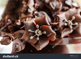 chocolate flowers chocolate flowers stock photo 317236727