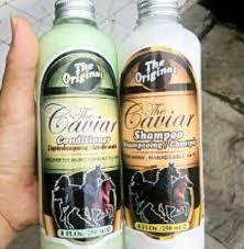 Sho Kuda Pemanjang Rambut caviar shoo kuda sho caviar shoo kuda caviar shoo the