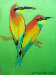 drawing birds oil pastels artxplorez