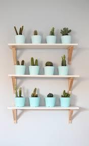 design evolving cactus archives design evolving