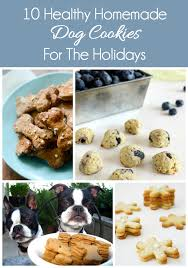 10 healthy homemade dog cookies the everyday dog mom