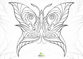 free printable anatomy coloring pages kids printable free download and print flower butterfly mandala