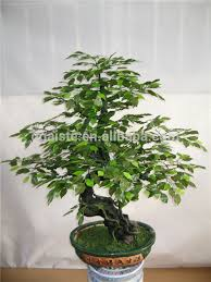 1 6 m artificial green banyan poinsettia bonsai flower tree