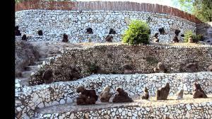 Nek Chand Rock Garden by Rock Garden