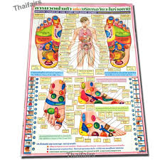 Foot Reflexology Map Amazon Com Poster Sketch Chart Of The Foot Reflexive Zones By