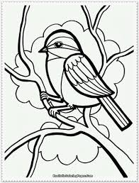 new realistic bird coloring pages 15 on line drawings with