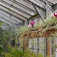 Botanical Gardens Highland Park Lamberton Conservatory 113 Photos 18 Reviews Botanical