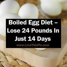 best 25 egg diet ideas on pinterest ketogenic meals ketogenic