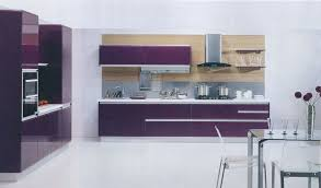 small purple kitchen appliances with wooden shelf and stainless