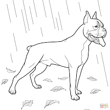 dachshund dog coloring page free printable coloring pages weiner