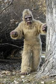 Bigfoot Halloween Costume Kids Undeadmonsters Gorilla Suits Gorilla Costumes Gorilla Suit
