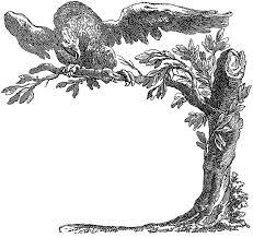 free illustration line graphic eagle tree free image on