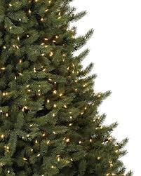 vermont white spruce narrow tree balsam hill