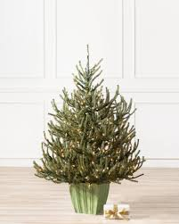 balsam hill color clear lights balsam hill potted baby spruce by balsam hill