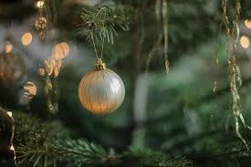 white christmas tree photography ne wall