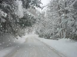 winter blahs terry saskia