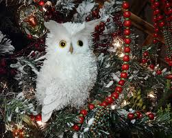 11 best critter christmas images on pinterest christmas