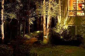 How To Decorate Outdoor Trees With Lights - wall and wash lighting ideas and pictures
