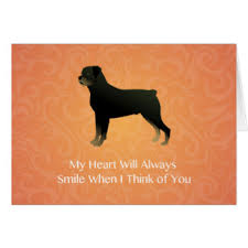 smiling rottweiler cards greeting photo cards zazzle
