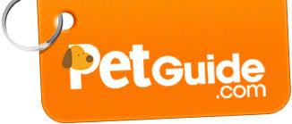 belgian sheepdog training guide belgian sheepdog