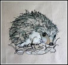 best 25 hedgehog drawing ideas on pinterest hedgehog