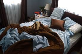 the law of diminishing returns as it applies to bed making