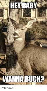 Oh Deer Meme - hey baby wanna buck oh deer deer meme on me me