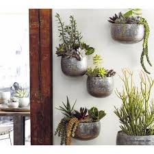6 awesome planter gardening ideas for your small apartment