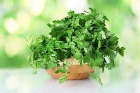 10 Vegetables U0026 Herbs You by 10 Medicinal Herbs You Can Grow At Home Top 10 Home Remedies
