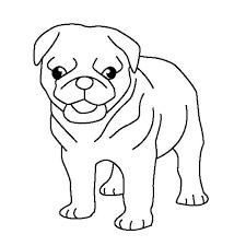 pug puppy coloring color luna