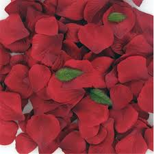 Rose Petals Red Rose Petal Confetti 164 Pieces Hobbycraft
