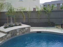amusing bamboo backyard privacy ideas best inspiration home