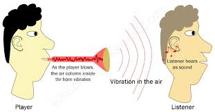 how do sound waves travel images Gallery how do we hear sound anatomy labelled jpg