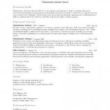 sample career profile personal profile examples for resumes resume cashier job nice