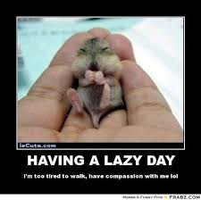 Tired Meme - having a lazy day im too tired to walk have compassion with me lol